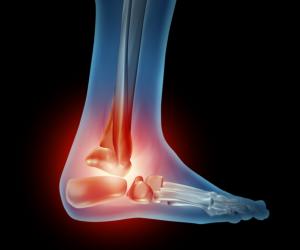feet bone